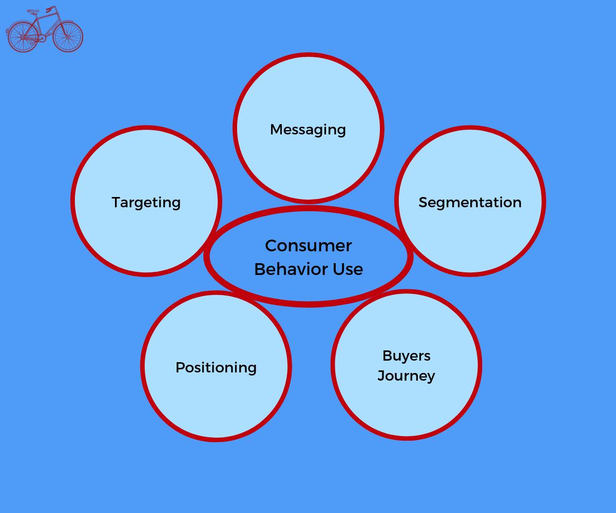 Using Consumer Behavior